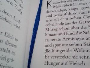 Blaues Lesbändchen im Buch